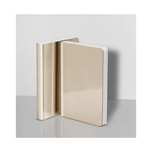 Nuuna Notebook Shiny Starlet Gold Small